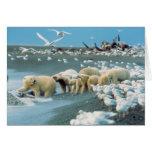 Cuesta del norte, Alaska. Ursus de los osos polare Tarjeta