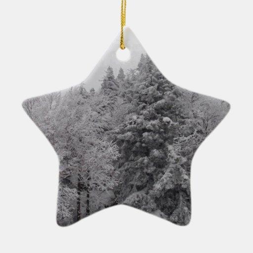 Cuestas enselvadas adorno navideño de cerámica en forma de estrella