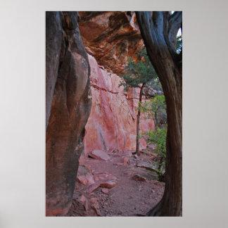 Cueva 1370 del punto del saltamontes póster