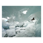 Cueva de hielo impresiones fotográficas