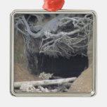 Cueva de la arena en la playa ornato