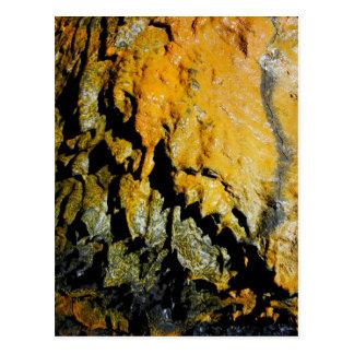 Cueva del tubo de lava postales