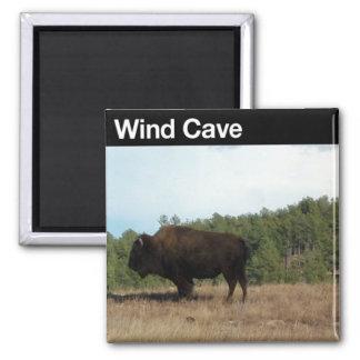 Cueva NP del viento Imanes