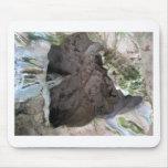 Cueva Tapetes De Ratones