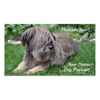 Cuidado de animales de compañía de la preparación tarjetas de visita