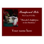 Cuidado de animales de compañía, guardería de la p tarjetas de visita