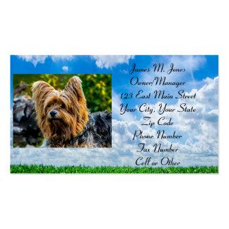 Cuidado de la oficina de negocios del perro del tarjetas de visita
