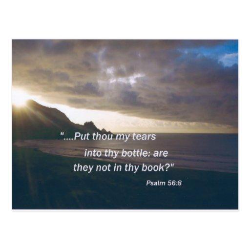 ¡Cuidados de dios para usted! Postal
