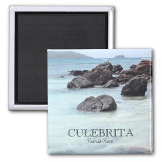 Culebrita Puerto Rico Magnet