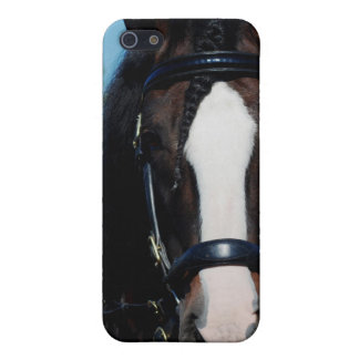 culpeper va case for iPhone SE/5/5s