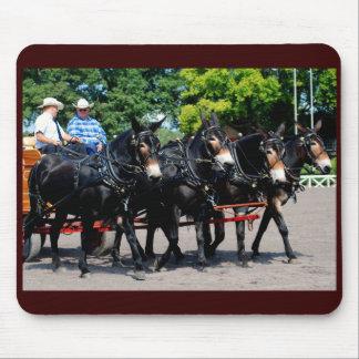 culpeper va draft horse mule show mousepads