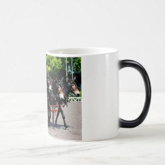 culpeper va draft horse mule show mugs