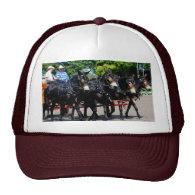 culpeper va draft horse/mule show trucker hat