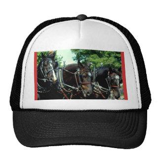 culpeper va draft horse sh ow trucker hat