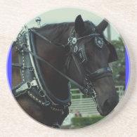 culpeper va draft horse show drink coasters