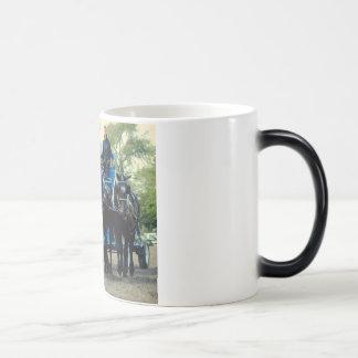 culpeper va draft horse show magic mug
