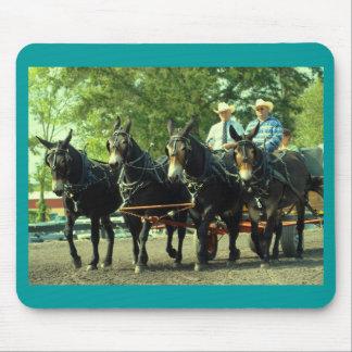 culpeper va draft horse show mousepad