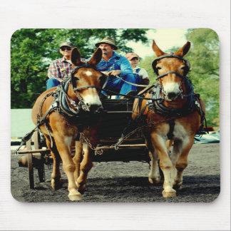 culpeper va draft horse show mouse pad