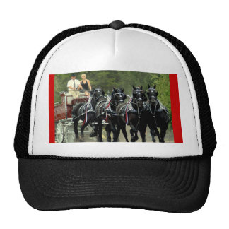 culpeper va draft horse show trucker hat