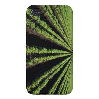Cultivando, cosechas, caso de Iphone, sojas, maíz, iPhone 4/4S Carcasa