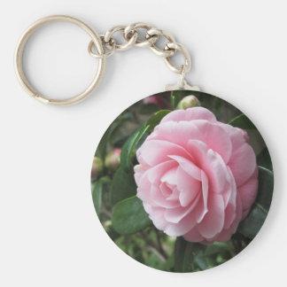 Cultivar japonés del japonica rosado de la camelia llavero redondo tipo pin