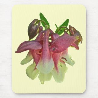 Cultivated Columbine Mousepad