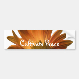 Cultive la paz pegatina de parachoque