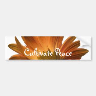 Cultive la paz pegatina para auto