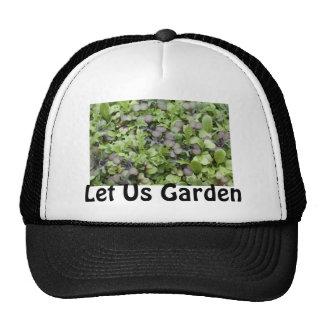 Cultivemos un huerto gorra
