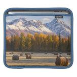 Cultivo de Alaska Funda Para iPads