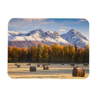 Cultivo de Alaska Imanes De Vinilo