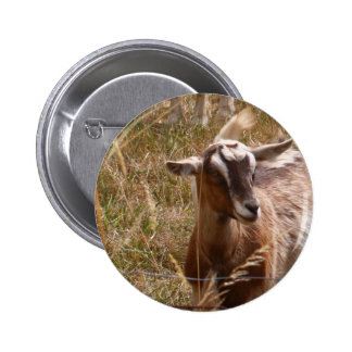 Cultivo de cabras pin redondo de 2 pulgadas