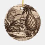 Cultivo de las piñas grandes, ejemplo de un desc ornamentos de reyes
