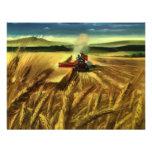 Cultivo del trigo del vintage invitaciones personales