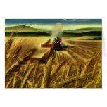 Cultivo del trigo del vintage tarjeton