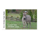 Cultivo, servicios o embarque del burro tarjetas de visita