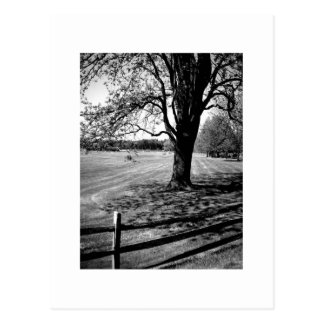 Culver Academies, Black and White Postcard