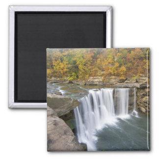 Cumberland Falls State Park near Corbin Kentucky Fridge Magnets