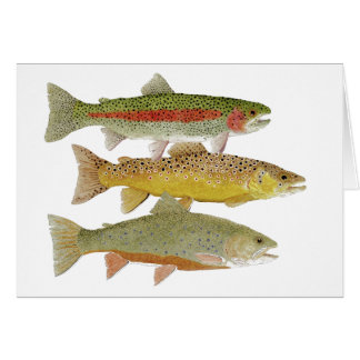 Cumberland Valley Trout Unlimited Card