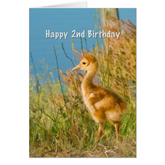 Cumpleaños, 2do, grúa de Sandhill del bebé Tarjeta De Felicitación