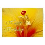 Cumpleaños amarillo del hibisco tarjetas