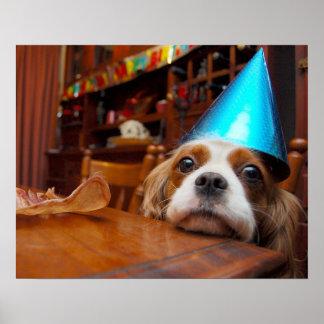 Cumpleaños arrogante del perro de aguas de rey Cha Posters