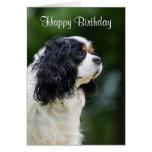 Cumpleaños arrogante del personalizado del perro tarjeta de felicitación