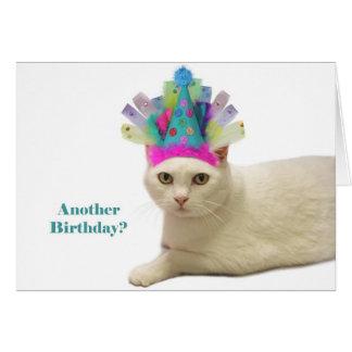 Cumpleaños blanco del gato tarjeta de felicitación