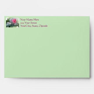 Cumpleaños Bromeliad rosado