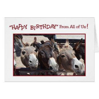 Cumpleaños chistoso del grupo del burro, todos tarjeta de felicitación