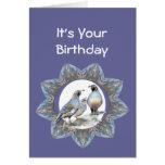 Cumpleaños, codorniz de California, pájaro, natura Felicitaciones