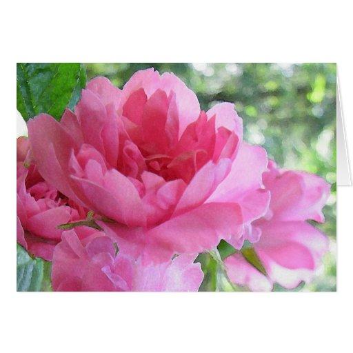 Cumpleaños color de rosa rosado suave tarjeta de felicitación