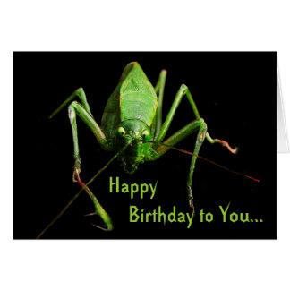 Cumpleaños de Katydid Tarjeta De Felicitación