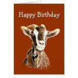 Cumpleaños de la diversión, de la cabra vieja que  felicitaciones